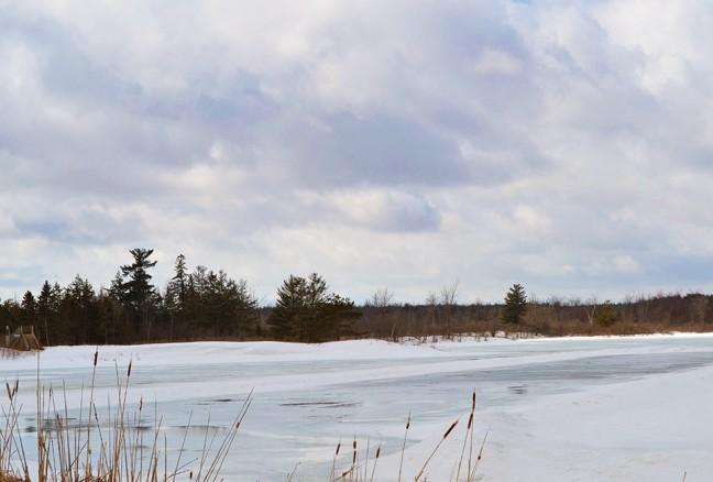 Wagon ride allows passengers to gaze out at the beauty of Little Cataraqui Creek Conservation Area.