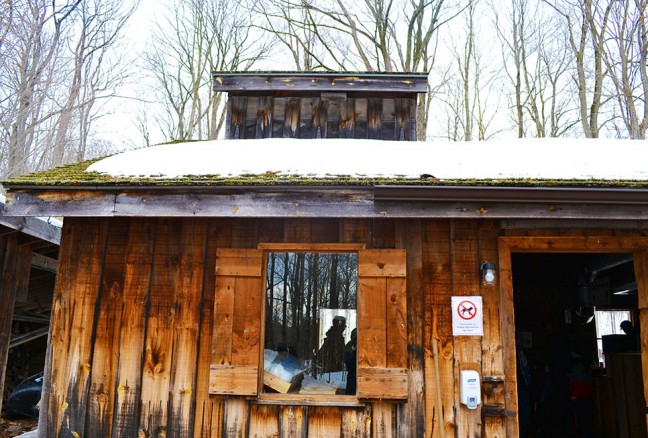 The glorious sugar shack with all things maple related within.