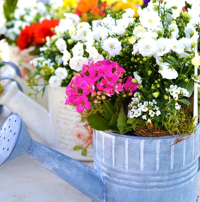Unique flower arrangements made by Simple Country Pleasures.