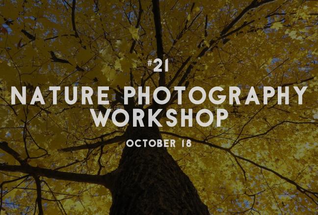 21_naturephotography