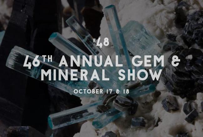 48_mineralshow