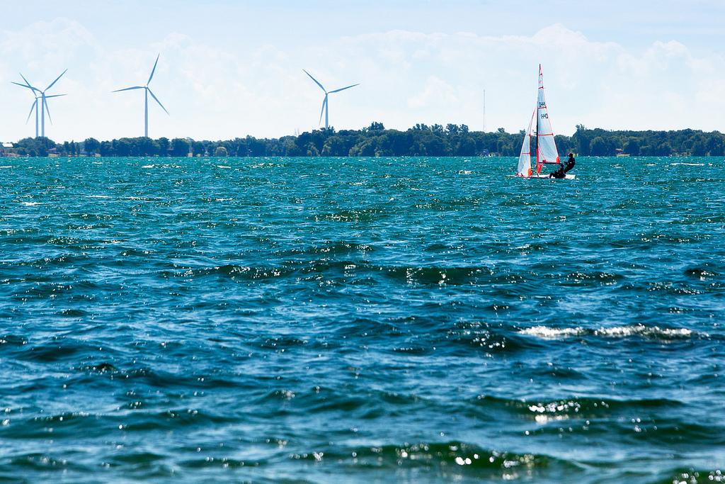 12 Festivals to Hit in Kingston This August, CORK Sailing Regatta